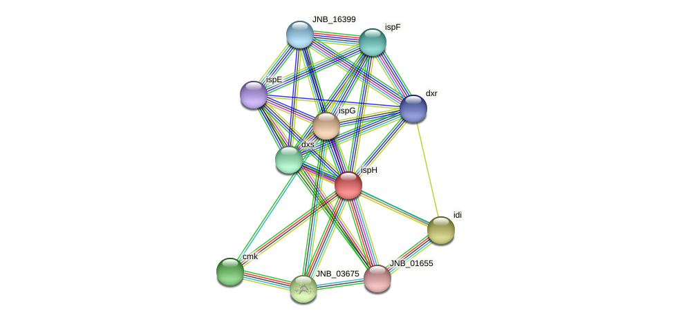 ispH protein (Janibacter sp. HTCC2649) - STRING interaction network