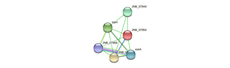 JNB_07954 protein (Janibacter sp. HTCC2649) - STRING interaction network