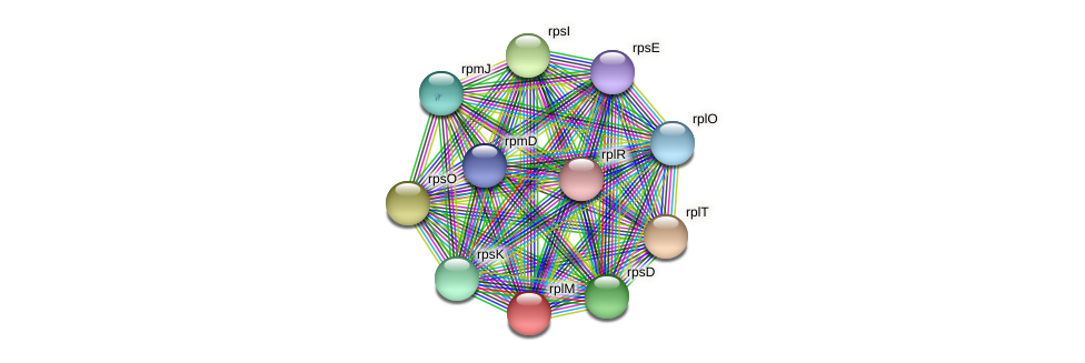 rplM protein (Janibacter sp. HTCC2649) - STRING interaction network