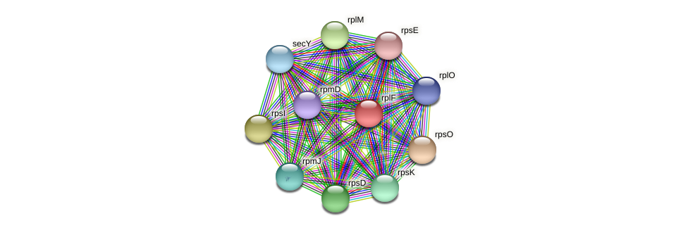 rplF protein (Janibacter sp. HTCC2649) - STRING interaction network