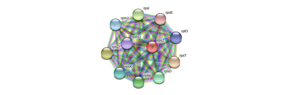 rpsN protein (Janibacter sp. HTCC2649) - STRING interaction network