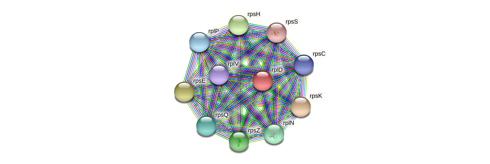 rplD protein (Janibacter sp. HTCC2649) - STRING interaction network