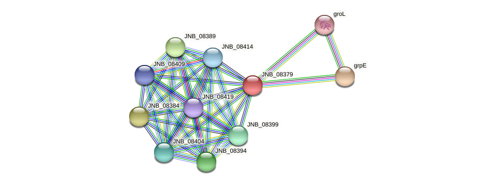 JNB_08379 protein (Janibacter sp. HTCC2649) - STRING interaction network
