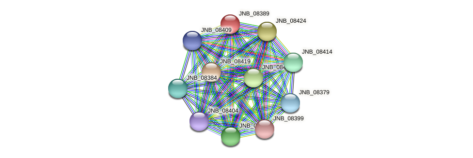 JNB_08389 protein (Janibacter sp. HTCC2649) - STRING interaction network