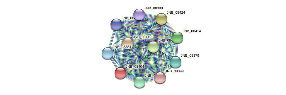 JNB_08404 protein (Janibacter sp. HTCC2649) - STRING interaction network