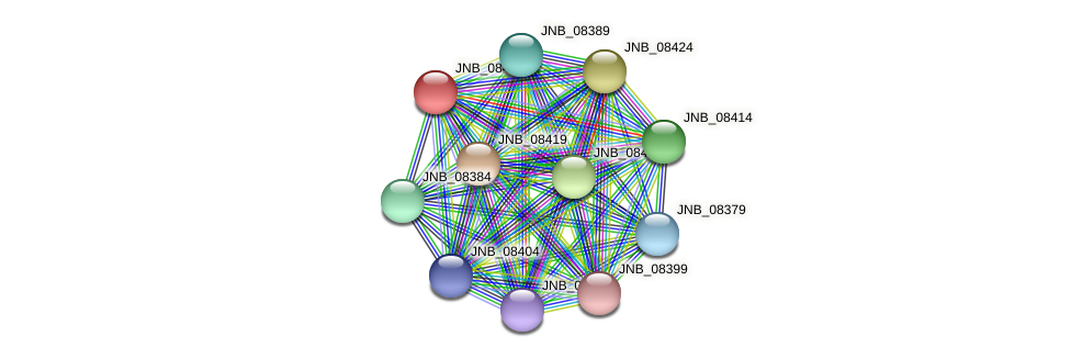 JNB_08409 protein (Janibacter sp. HTCC2649) - STRING interaction network