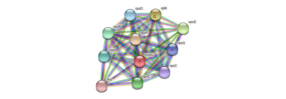 nusG protein (Janibacter sp. HTCC2649) - STRING interaction network