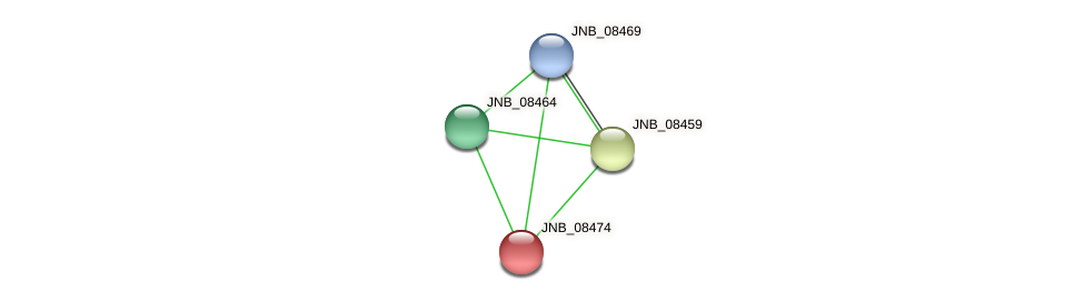 JNB_08474 protein (Janibacter sp. HTCC2649) - STRING interaction network