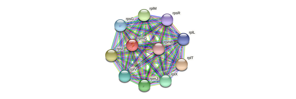 rpmG protein (Janibacter sp. HTCC2649) - STRING interaction network