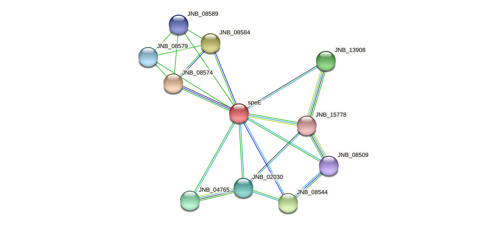 JNB_08569 protein (Janibacter sp. HTCC2649) - STRING interaction network
