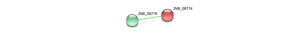 JNB_08774 protein (Janibacter sp. HTCC2649) - STRING interaction network