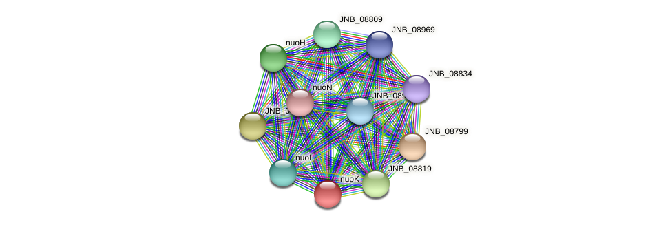 JNB_08814 protein (Janibacter sp. HTCC2649) - STRING interaction network