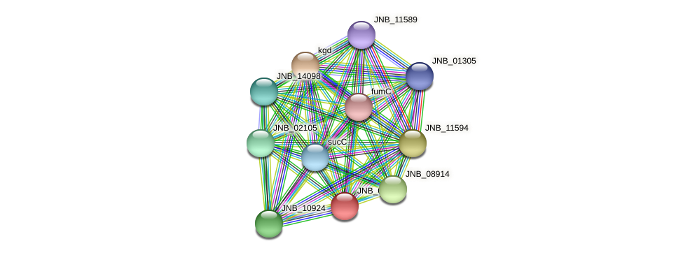 JNB_08904 protein (Janibacter sp. HTCC2649) - STRING interaction network