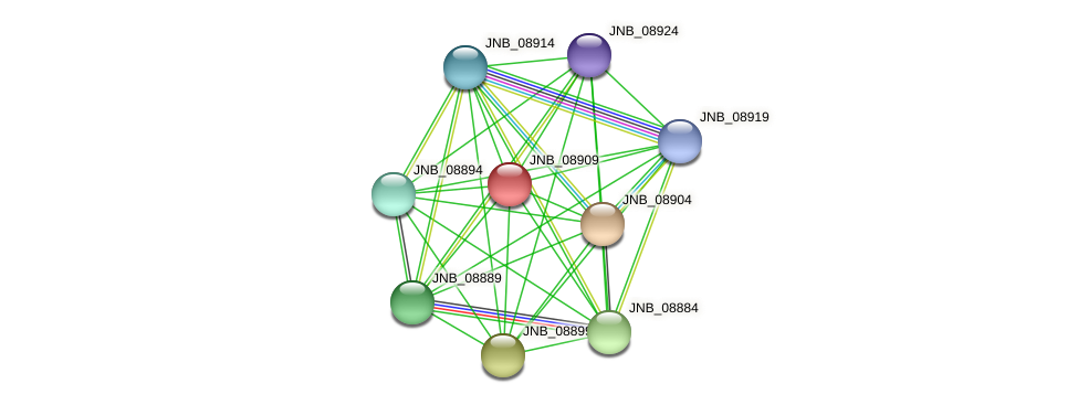 JNB_08909 protein (Janibacter sp. HTCC2649) - STRING interaction network