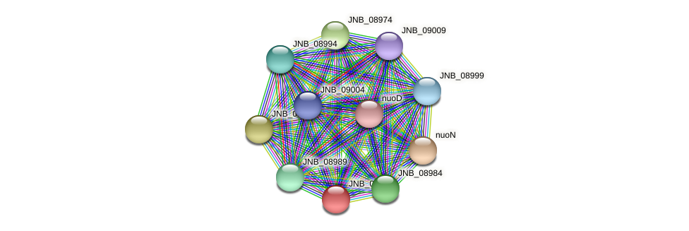 JNB_08979 protein (Janibacter sp. HTCC2649) - STRING interaction network
