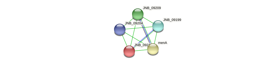 JNB_09214 protein (Janibacter sp. HTCC2649) - STRING interaction network