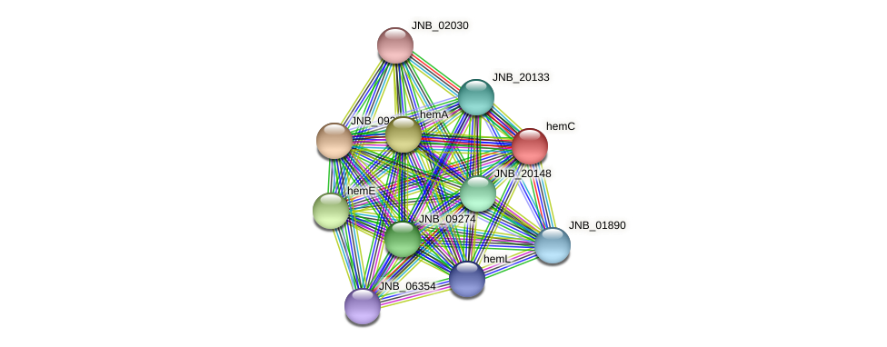 hemC protein (Janibacter sp. HTCC2649) - STRING interaction network