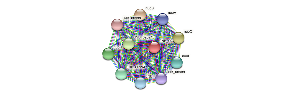 JNB_09434 protein (Janibacter sp. HTCC2649) - STRING interaction network