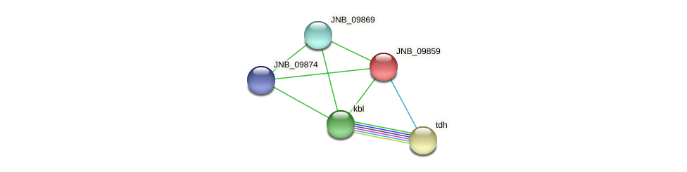 JNB_09859 protein (Janibacter sp. HTCC2649) - STRING interaction network