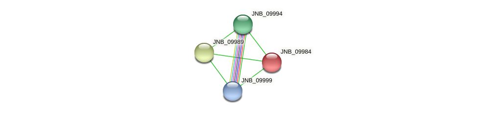 JNB_09984 protein (Janibacter sp. HTCC2649) - STRING interaction network