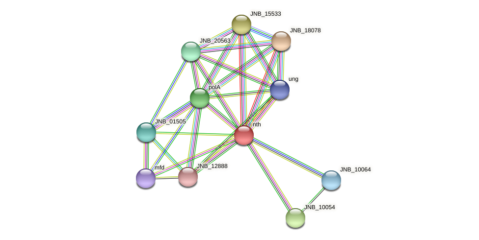 nth protein (Janibacter sp. HTCC2649) - STRING interaction network