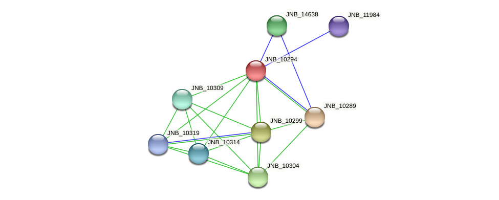 JNB_10294 protein (Janibacter sp. HTCC2649) - STRING interaction network