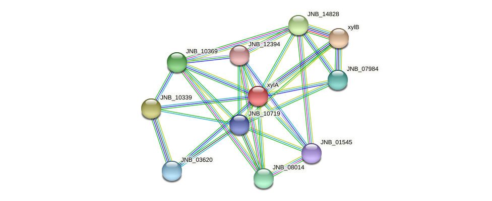 xylA protein (Janibacter sp. HTCC2649) - STRING interaction network