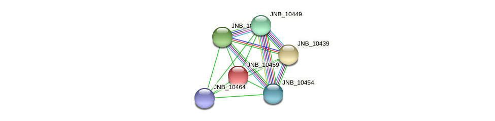 JNB_10459 protein (Janibacter sp. HTCC2649) - STRING interaction network