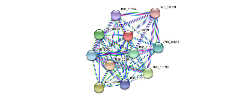 JNB_10499 protein (Janibacter sp. HTCC2649) - STRING interaction network