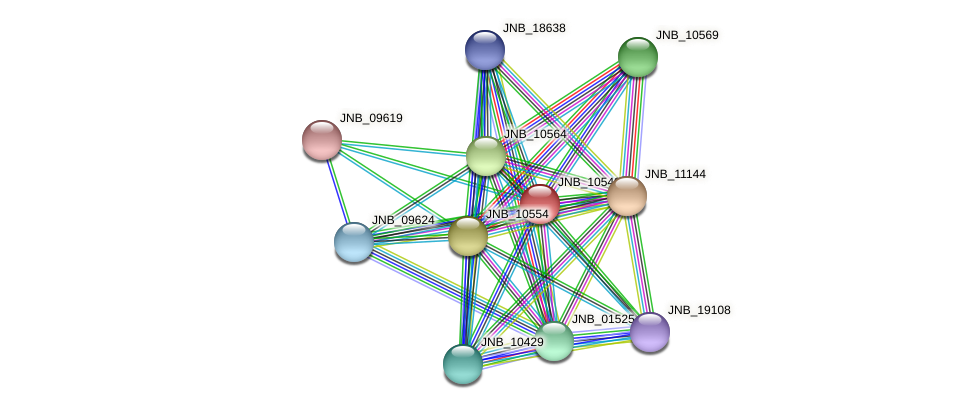 JNB_10549 protein (Janibacter sp. HTCC2649) - STRING interaction network