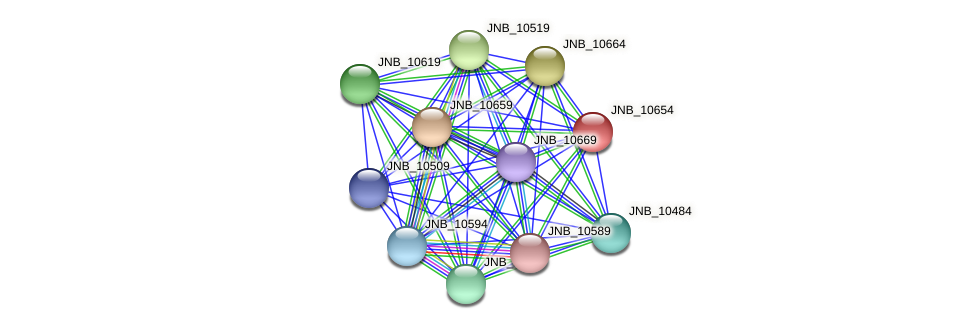JNB_10654 protein (Janibacter sp. HTCC2649) - STRING interaction network