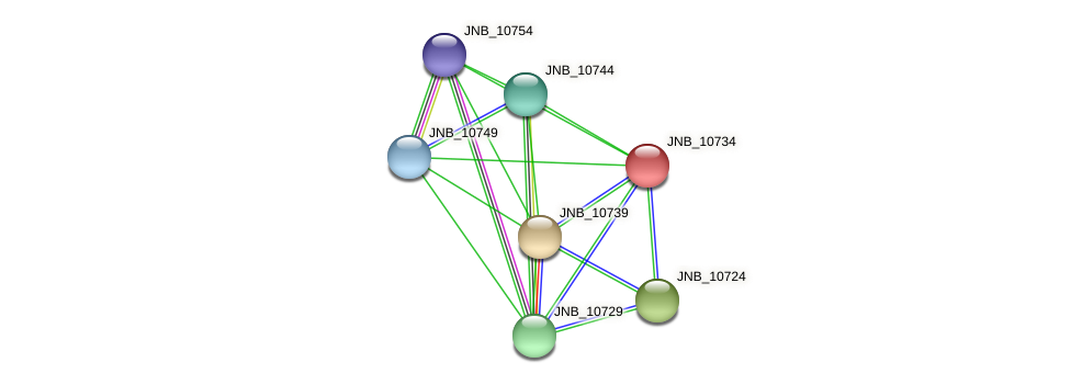 JNB_10734 protein (Janibacter sp. HTCC2649) - STRING interaction network