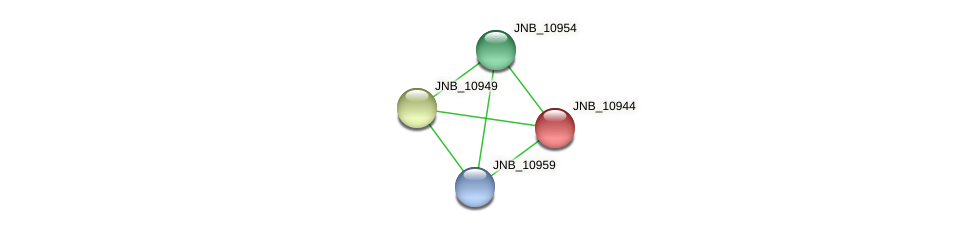 JNB_10944 protein (Janibacter sp. HTCC2649) - STRING interaction network