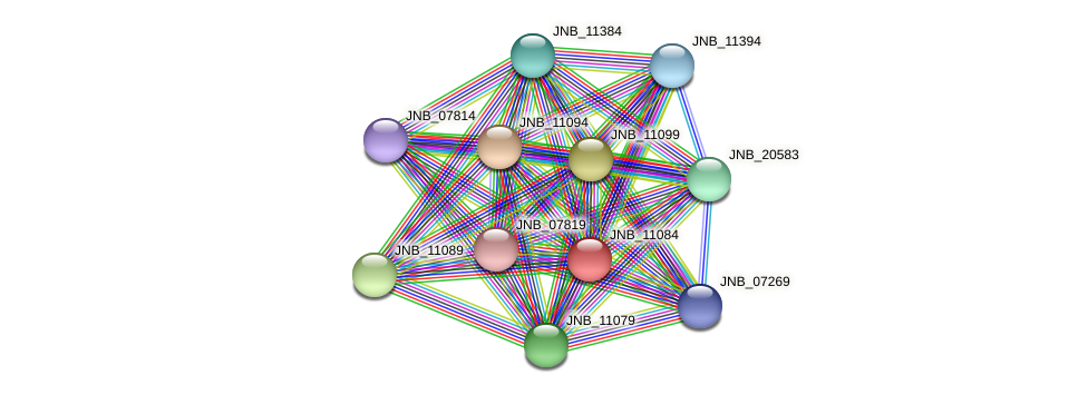JNB_11084 protein (Janibacter sp. HTCC2649) - STRING interaction network