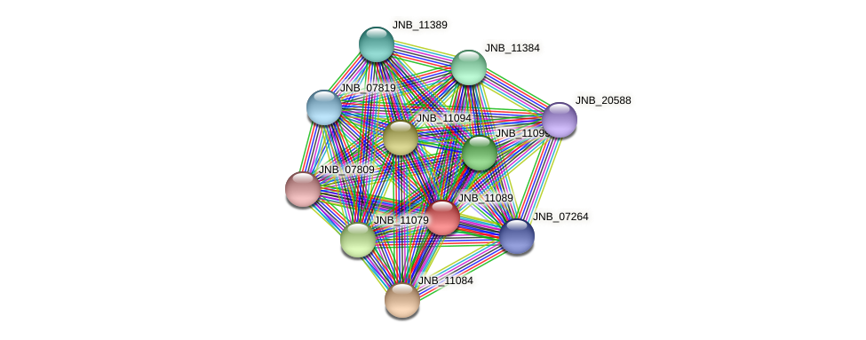 JNB_11089 protein (Janibacter sp. HTCC2649) - STRING interaction network