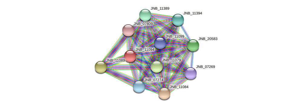 JNB_11094 protein (Janibacter sp. HTCC2649) - STRING interaction network
