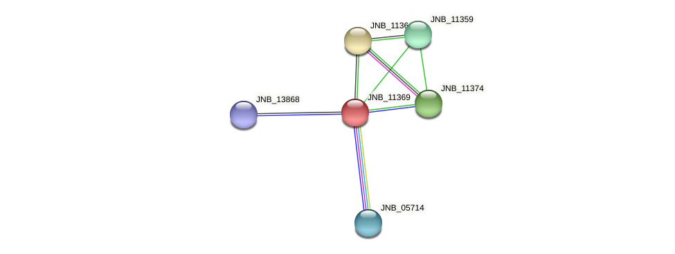 JNB_11369 protein (Janibacter sp. HTCC2649) - STRING interaction network