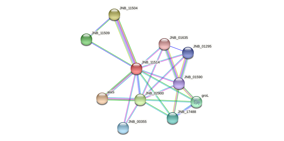 JNB_11514 protein (Janibacter sp. HTCC2649) - STRING interaction network