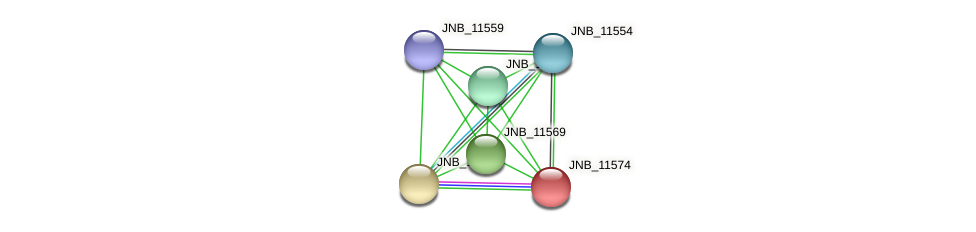 JNB_11574 protein (Janibacter sp. HTCC2649) - STRING interaction network