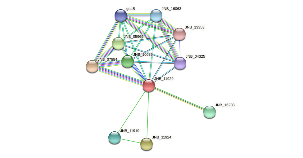 JNB_11929 protein (Janibacter sp. HTCC2649) - STRING interaction network