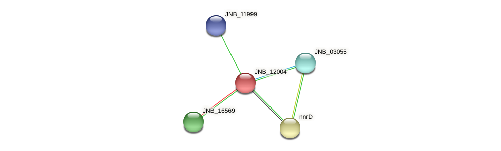 JNB_12004 protein (Janibacter sp. HTCC2649) - STRING interaction network