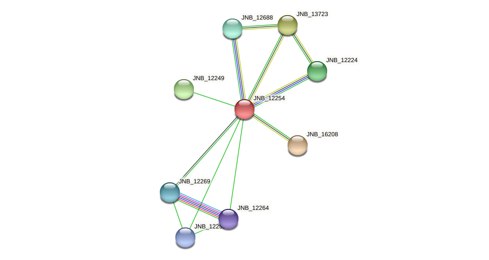 JNB_12254 protein (Janibacter sp. HTCC2649) - STRING interaction network