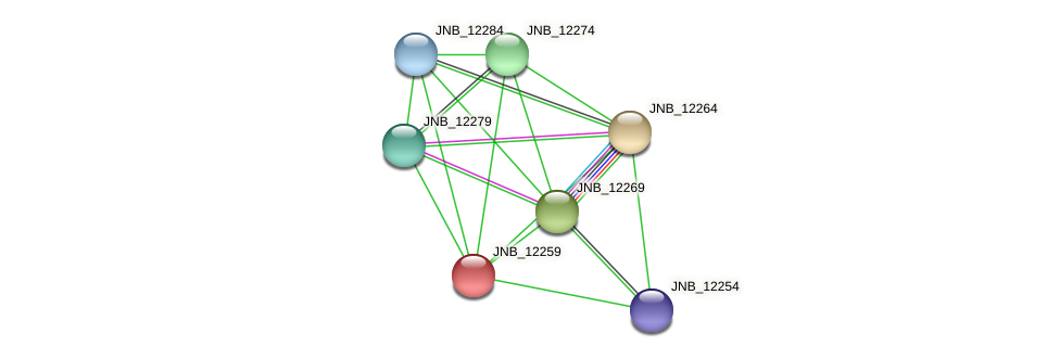 JNB_12259 protein (Janibacter sp. HTCC2649) - STRING interaction network