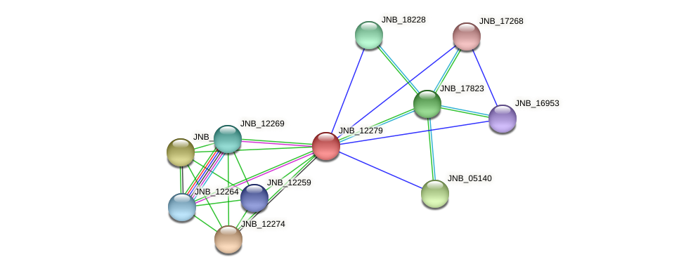 JNB_12279 protein (Janibacter sp. HTCC2649) - STRING interaction network