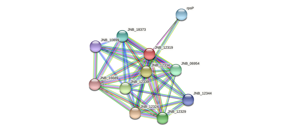 JNB_12319 protein (Janibacter sp. HTCC2649) - STRING interaction network