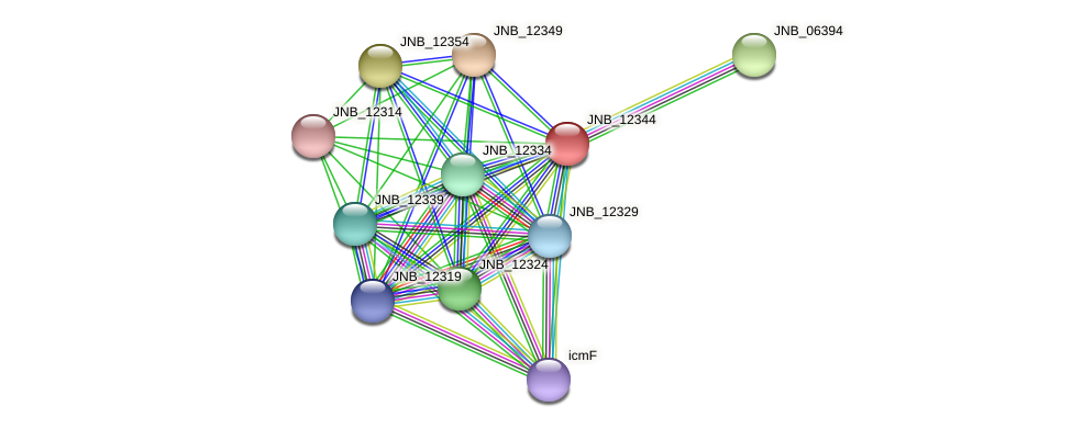 JNB_12344 protein (Janibacter sp. HTCC2649) - STRING interaction network