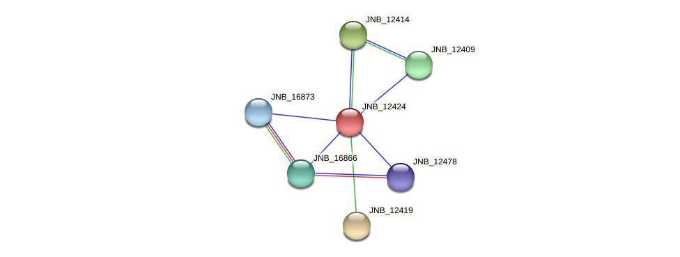 JNB_12424 protein (Janibacter sp. HTCC2649) - STRING interaction network
