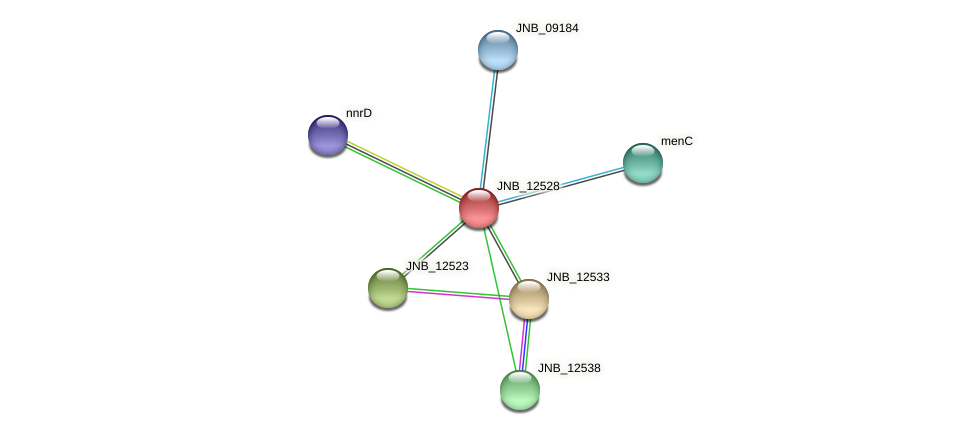 JNB_12528 protein (Janibacter sp. HTCC2649) - STRING interaction network