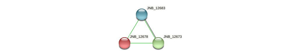 JNB_12678 protein (Janibacter sp. HTCC2649) - STRING interaction network