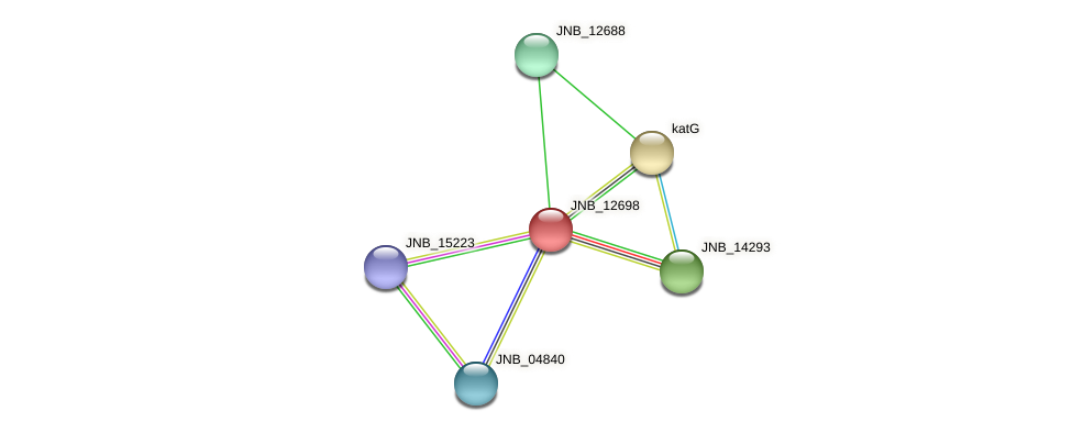JNB_12698 protein (Janibacter sp. HTCC2649) - STRING interaction network